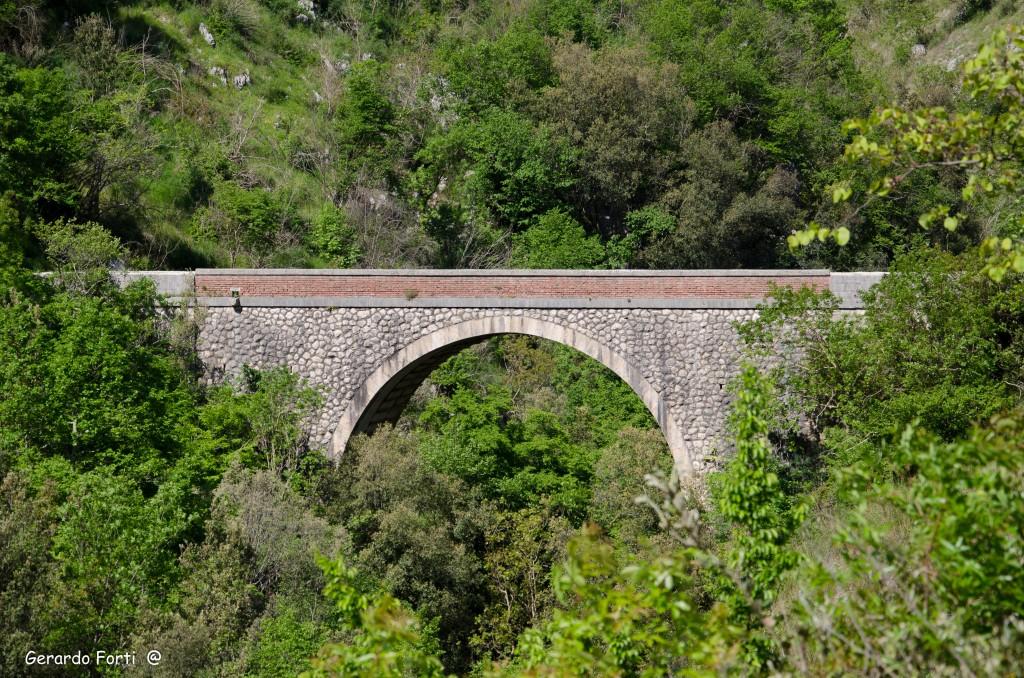 ponte melfa