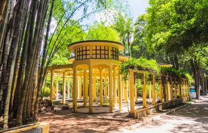Parque_da_Agua_Branca,Sao_Paulo,Brasil_12